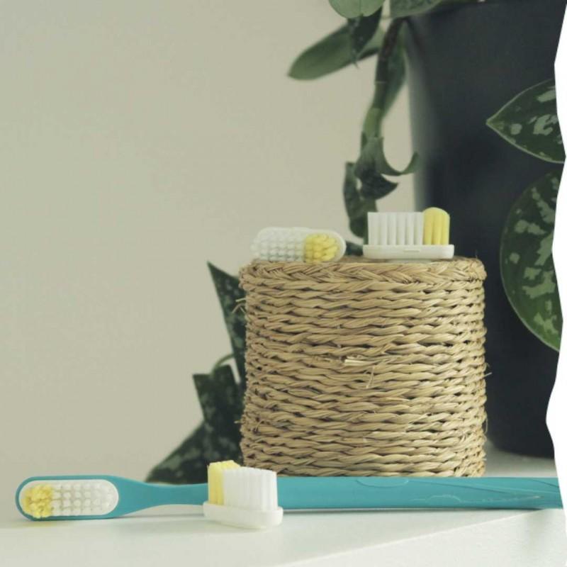 1 an de brosse à dents à tête rechargeable Lamazuna