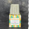 Lamazuna Bio Shampoing solide cheveux normaux - Pin sylvestre - Fabriqué en France