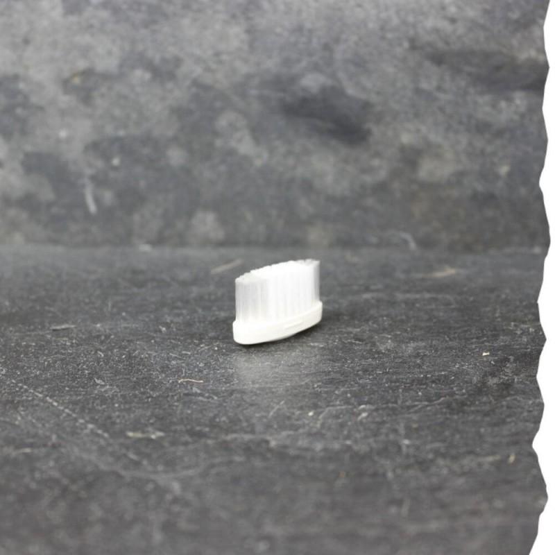 Tête de rechange pour brosse à dents - Medium - La Maline